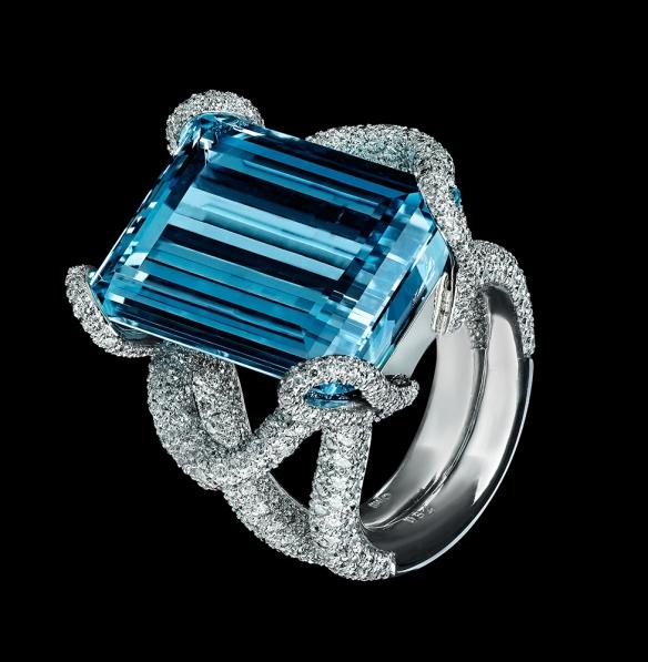 Aqua-Ring_rgb-e